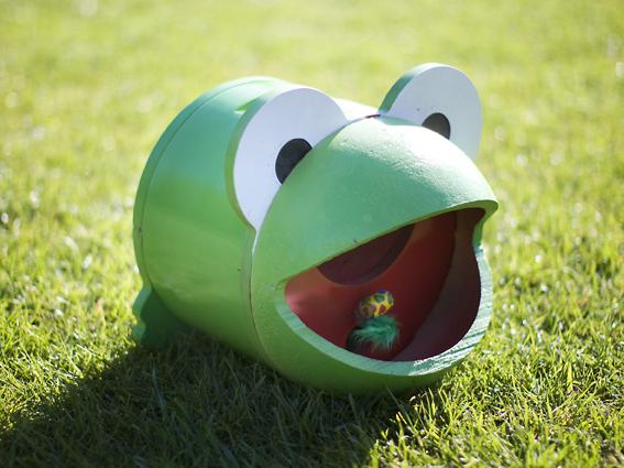 Froggy, de automatische vliegeneter