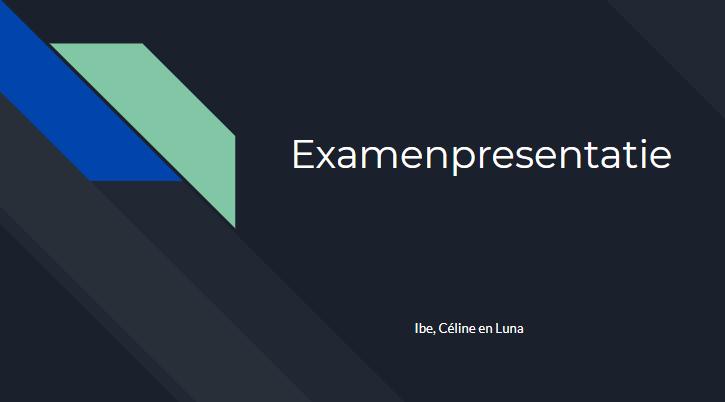 Voorbereiding examenpresentatie